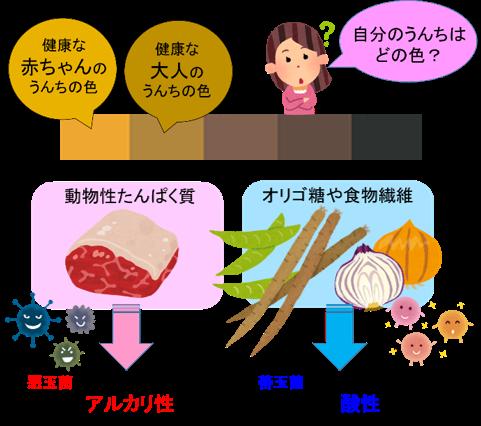 の 食べ物 アルカリ性